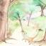 De kat in het bos